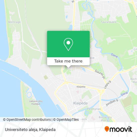 Universiteto alėja map