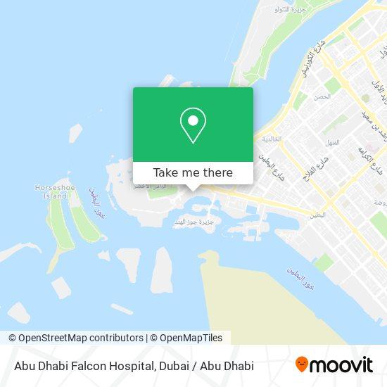 Abu Dhabi Falcon Hospital map