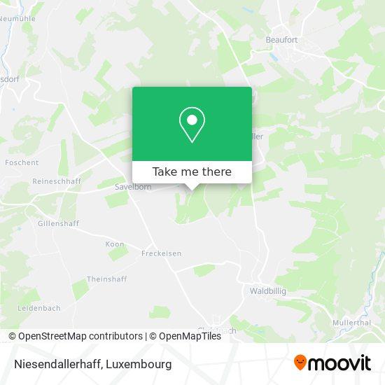 Niesendallerhaff map