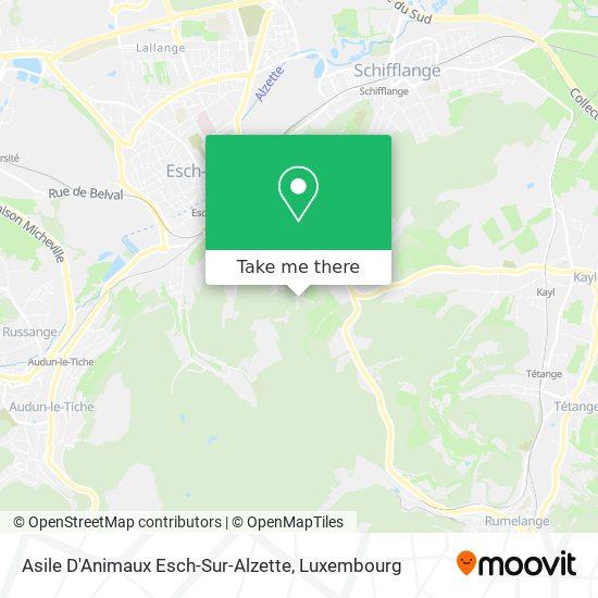 Asile D'Animaux Esch-Sur-Alzette map