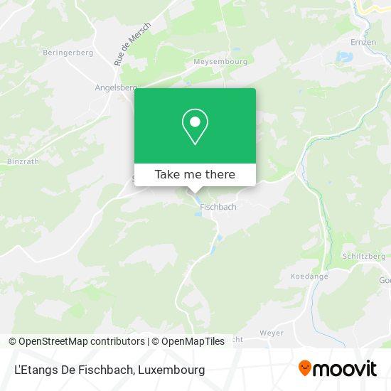 L'Etangs De Fischbach map