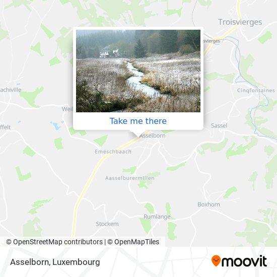 Asselborn map