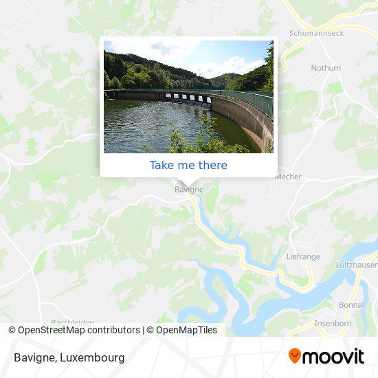Bavigne map