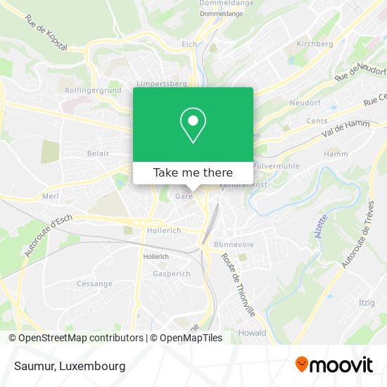 Saumur map