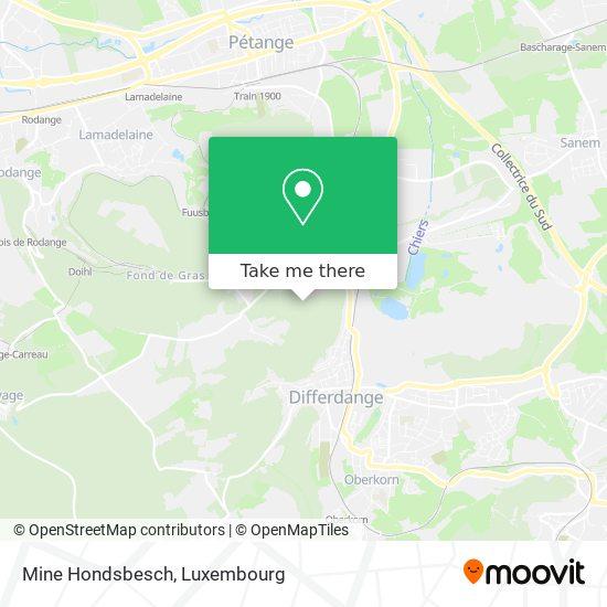 Bunker Hondsbesch map