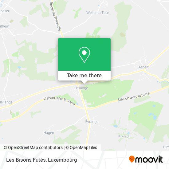 Home Bisons Futés - Fnel map