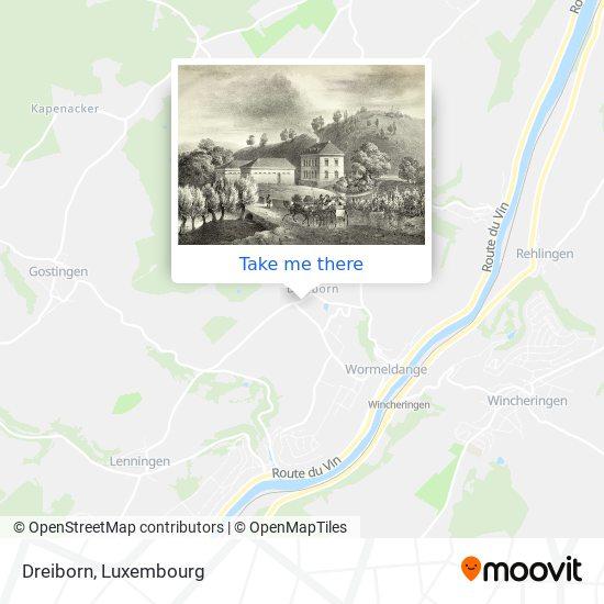 Dreiborn map