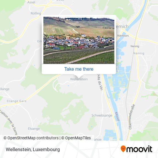 Wellenstein map