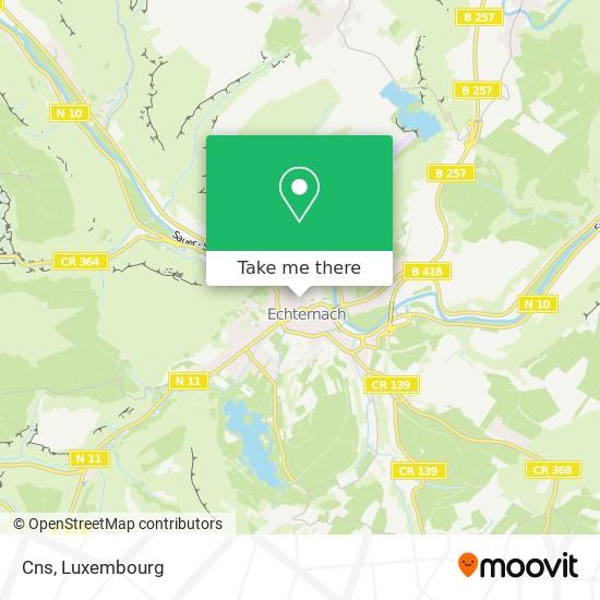 Cns map