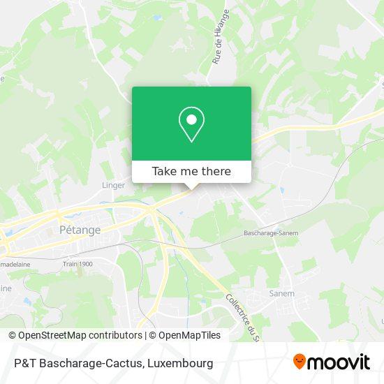 P&T Bascharage-Cactus map
