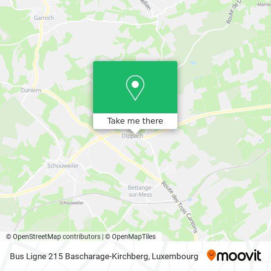 Bus Ligne 215 Bascharage-Kirchberg Karte