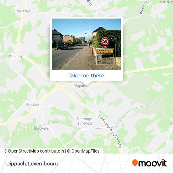 Dippach map