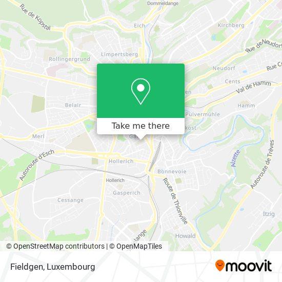 Fieldgen map