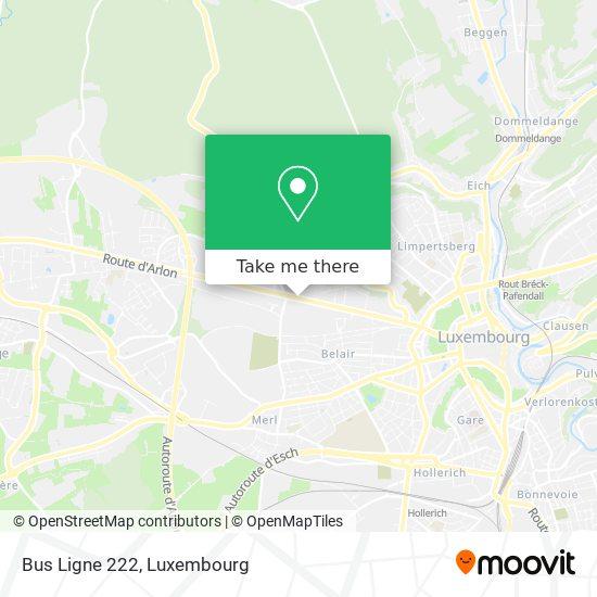 Bus Ligne 222 map
