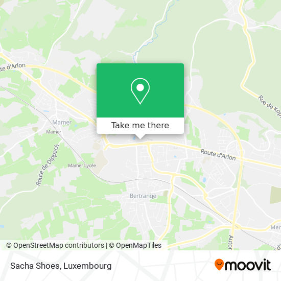 Sacha Shoes map