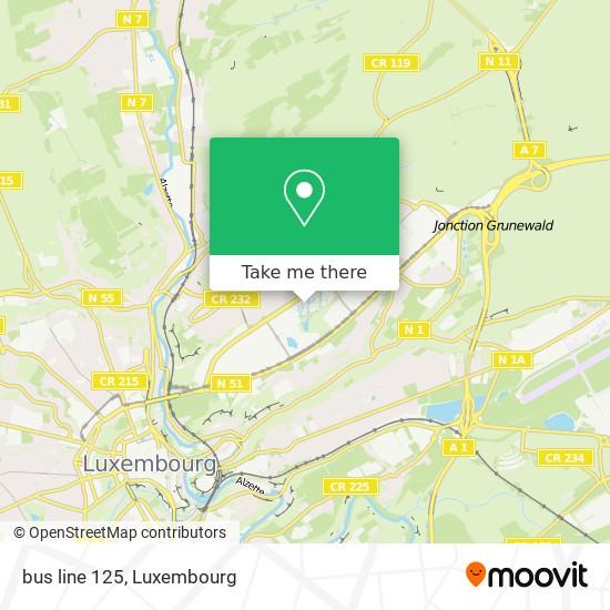 bus line 125 map