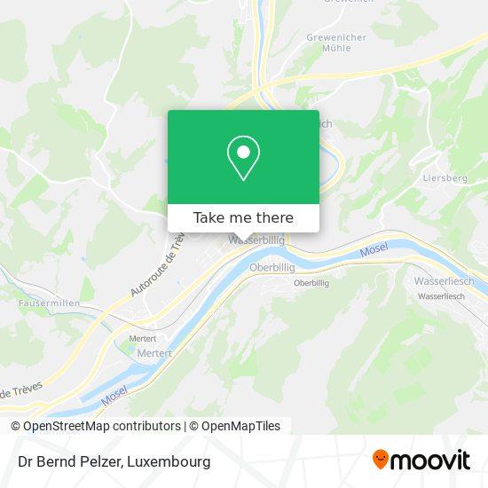 Dr Bernd Pelzer map