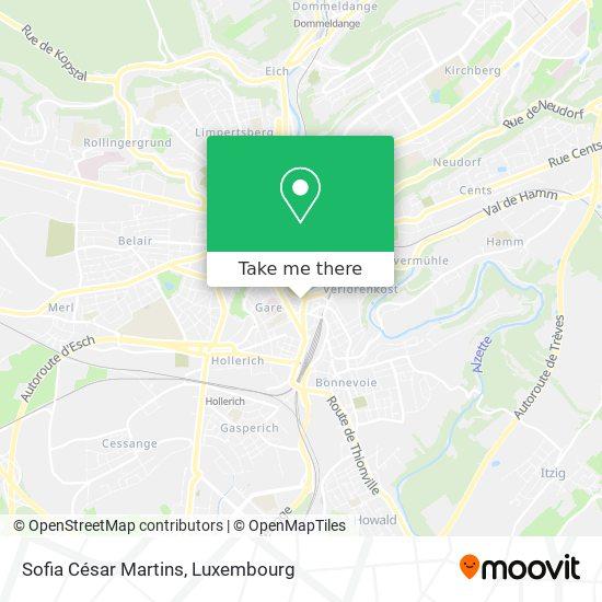 Sofia César Martins map
