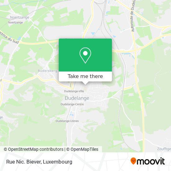 Rue Nic. Biever map