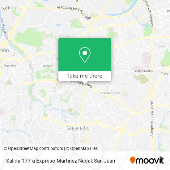 Salida 177 a Expreso Martinez Nadal map