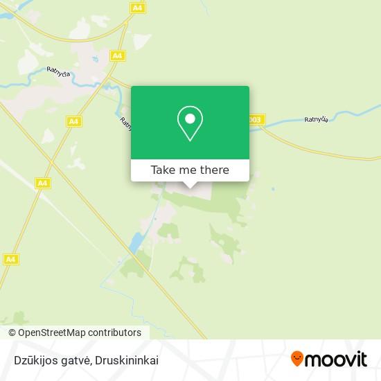 Dzūkijos gatvė map