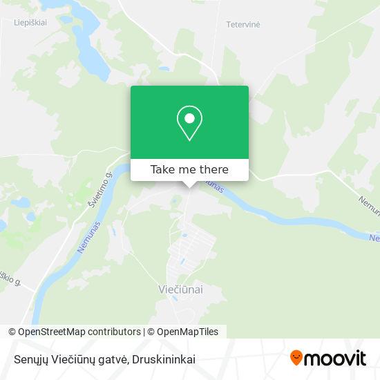 Senųjų Viečiūnų gatvė map