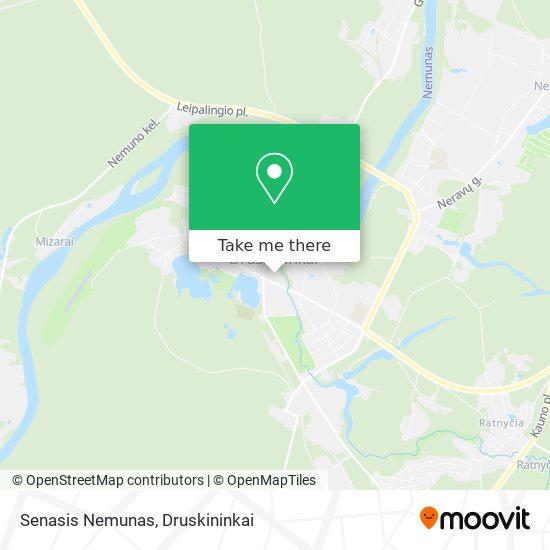 Senasis Nemunas map