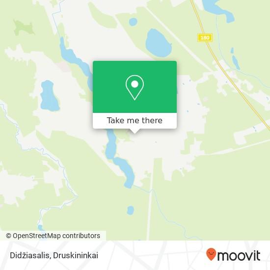 Didžiasalis map
