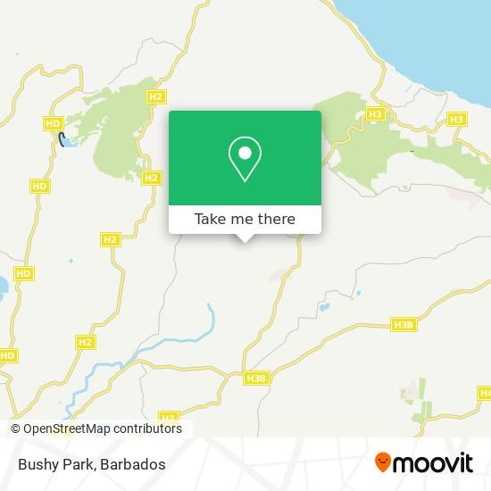 Bushy Park map
