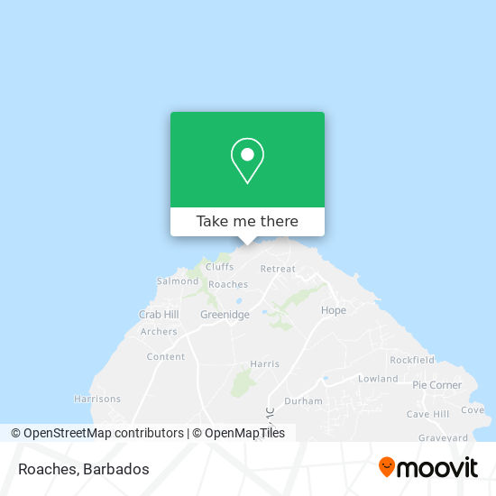 Roaches map