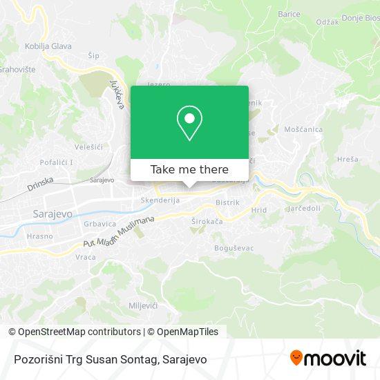 Pozorišni Trg Susan Sontag map