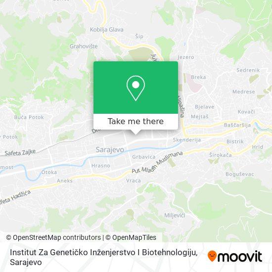 Ingeb map