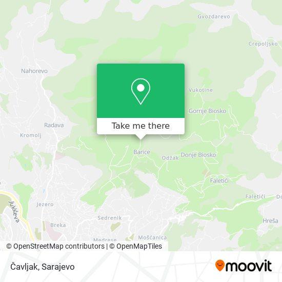 Čavljak map