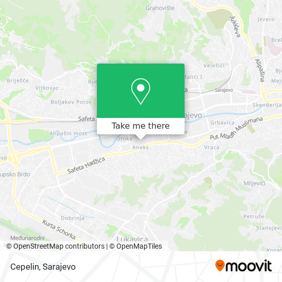 Cepelin map