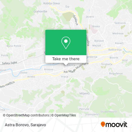 Astra Borovo map