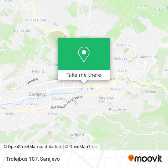 Trolejbus 107 map