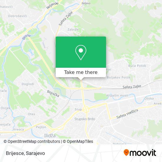 Brijesce map