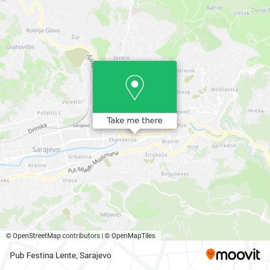 Pub Festina Lente map