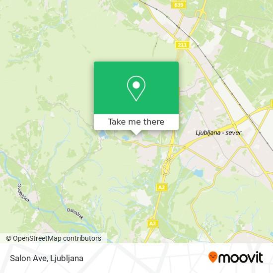 Salon Ave map