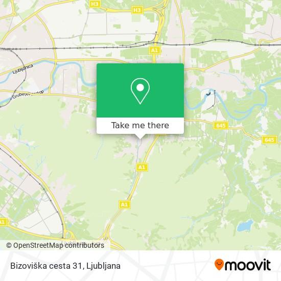 Bizoviška cesta 31 map