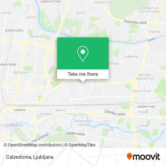 Calzedonia map