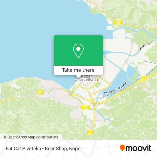 Fat Cat Pivoteka - Beer Shop map