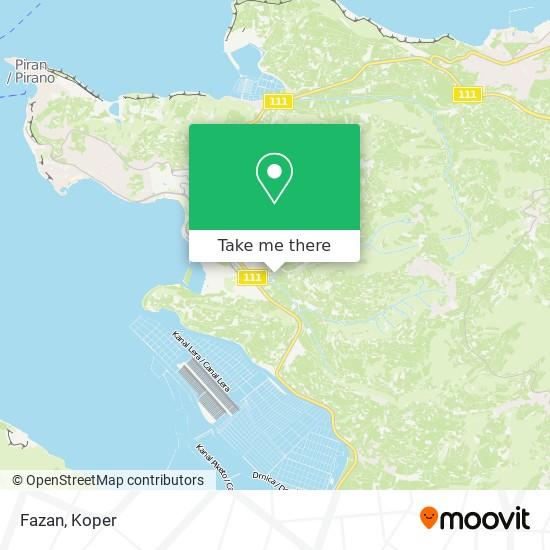 Fazan map