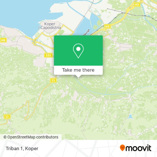 Triban 1 map