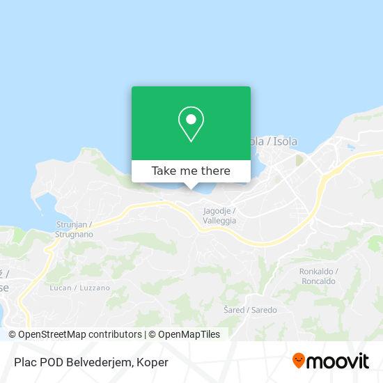 Plac Pod Belvederjem map