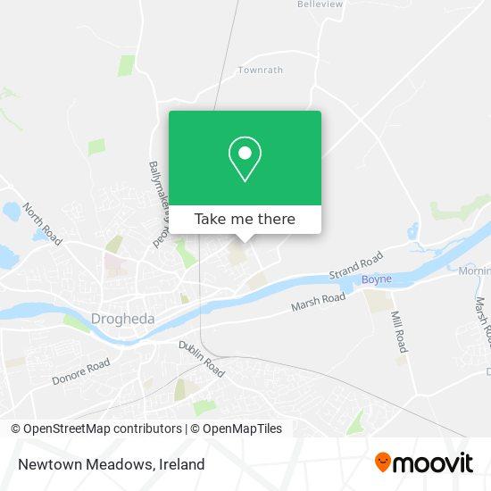 Newtown Meadows plan
