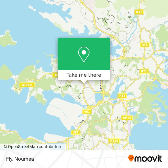 Fly map