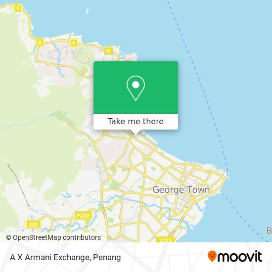 Peta A X Armani Exchange