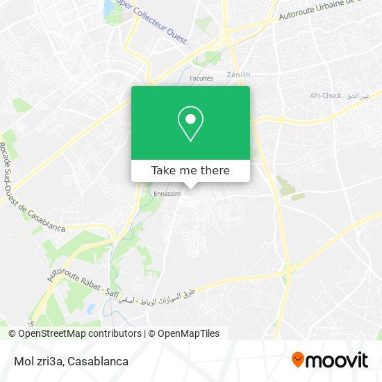 Mol zri3a map