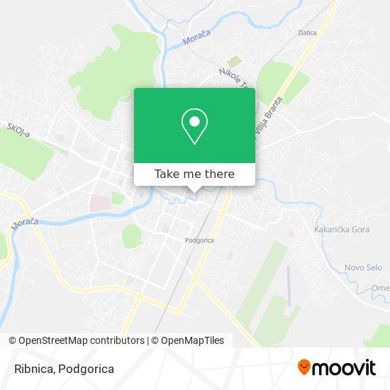 Ribnica map